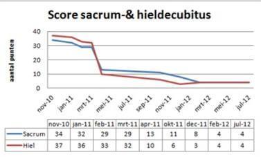 Wetenschappelijk bewijs dat de drukverdelende werking van Decupré matrassen leidt tot vermindering van decubitus.