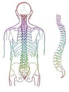 Een matras moet de natuurlijke lichaamshouding optimaliseren. Op die manier heeft u minder last van uw hernia.